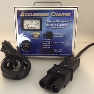 DPI 48 Volt Golf Cart Battery Charger Yamaha Nabson 2 Pin BP